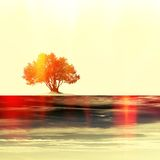 Single tree in red tones on ancient stained paper. With copy space for text or image. Green concept Stock Images