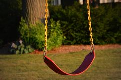Single Tree Swing Stock Photo