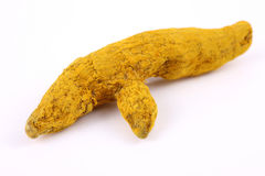 Single turmeric bark Stock Image