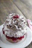 Single vanilla cupcake with cream cheese Stock Photos