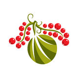 Single vector flat green leaf with red seeds. Herbal and botany Royalty Free Stock Image