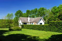 Single village house in green grass and plants Stock Photo