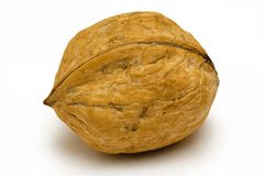 Single Walnut. Macro shot of an isolated walnut on a white background Royalty Free Stock Photo