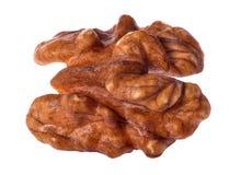 Single walnut isolated on white Royalty Free Stock Images