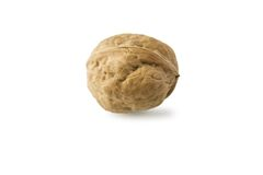 Single walnut Stock Photo