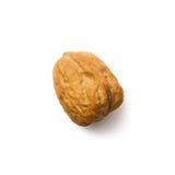 Single walnut  white top Stock Photo