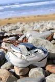 Single washed up shoe Stock Images