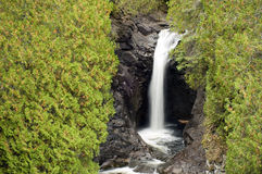Single waterfall Stock Images