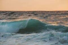 Single wave close up on sunrise Royalty Free Stock Image