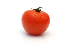 Single wet tomato  on white background Stock Image