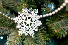 Single white Christmas snowflake hanging on  tree, as the substrate and background Royalty Free Stock Photo