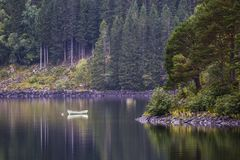 Single white rowing boat on a calm Lake with Reflection in the Water in a colorful forest Royalty Free Stock Images
