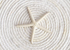 Single white starfish on white rope coiled in a ci Stock Photo