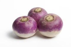 Single whole purple headed turnips Royalty Free Stock Photo