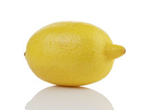 Single whole ripe lemon Royalty Free Stock Photography