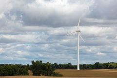 Single wind turbine in a corn field Royalty Free Stock Image
