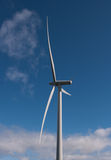 Single wind turbine in the sun. Wind turbine on a wind farm in Scotland, Europe Stock Image