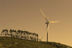 Single wind turbine at the sunset stock image