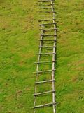 Single Wooden Handmade Fixed Ladder on Grass Ground Stock Images