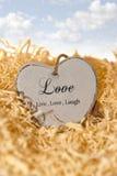 Single wooden heart in a love nest Stock Photo