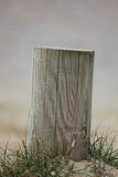Single wooden post Stock Images