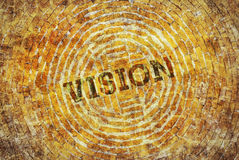 Single word Vision Royalty Free Stock Image