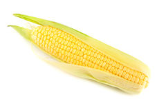Single yellow corn on the cob Stock Photography