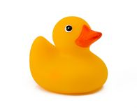 Single Yellow Duck Isolated On White. Includes clipping path stock images