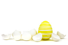 Single yellow easter egg between egg shells  on white Stock Photography