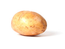 Single yellow potato Royalty Free Stock Image