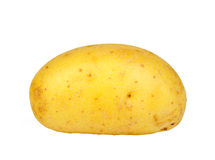 Single yellow raw potato Royalty Free Stock Photography
