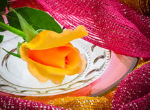 Single yellow rose on antique glass plate with scarf (P) Stock Images