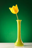Single yellow tulip in a green vase Stock Photography