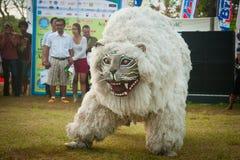 Singo Ulung Bondowoso. fotografia stock