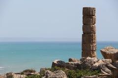 Singola colonna greca doric antica, selinunte Fotografie Stock