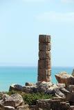 Singola colonna greca doric antica, selinunte Immagine Stock