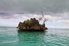 Singola Coral Island Immagine Stock Libera da Diritti