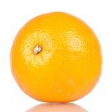 Singola frutta arancio Immagini Stock Libere da Diritti