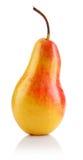 Singola frutta fresca della pera isolata Fotografia Stock Libera da Diritti