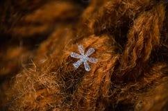 Singola macro del fiocco di neve su fondo marrone Fotografia Stock