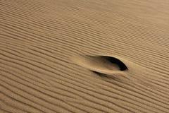 Singola orma in sabbia increspata Fotografia Stock Libera da Diritti