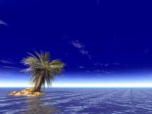Singola palma Fotografie Stock Libere da Diritti