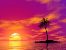Singola palma Fotografia Stock Libera da Diritti