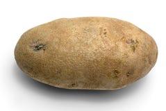 Singola patata Fotografie Stock