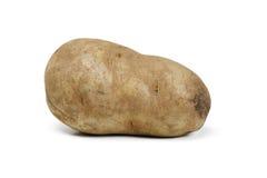 Singola patata fotografia stock