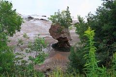 Singola roccia di Hopewell durante la bassa marea Immagine Stock