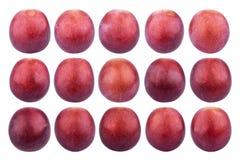 Singola uva isolata su fondo bianco Raccolta dell'uva rossa Fotografia Stock