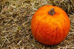 Singola zucca sulla decorazione Autumn Fall Seasonal dell'azienda agricola del mucchio di fieno Immagini Stock