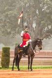 Singoli cavallo e cavaliere a presidenti Palace fotografia stock libera da diritti
