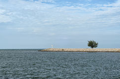 Singolo albero al pilastro al mare sotto il cielo nuvoloso - tutto in blu Immagine Stock Libera da Diritti